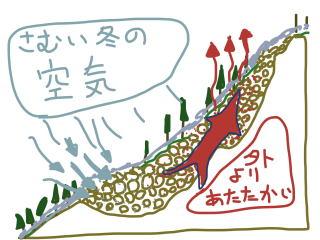 冬の風穴の断面図